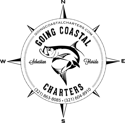 Sebastian fishing charters